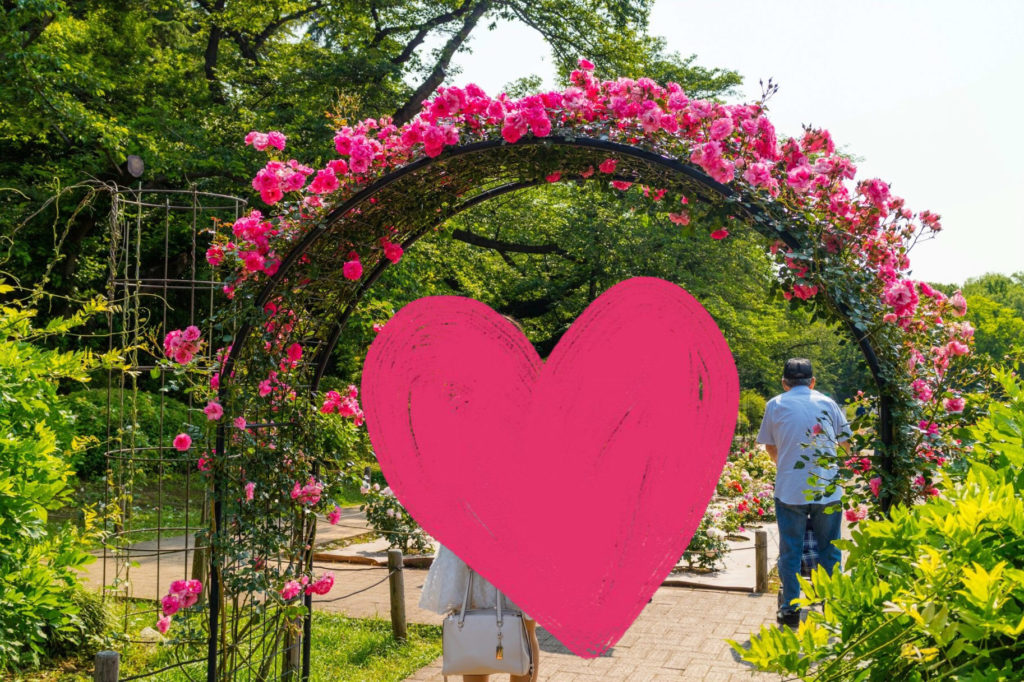 神代植物公園 バラのアーチ